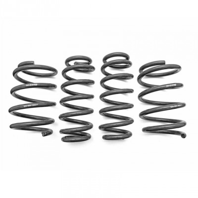 034 Motorsport Dynamic+ Performance Lowering Springs